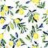 NuWallpaper Lemon Drop Self Adhesive Wallpaper