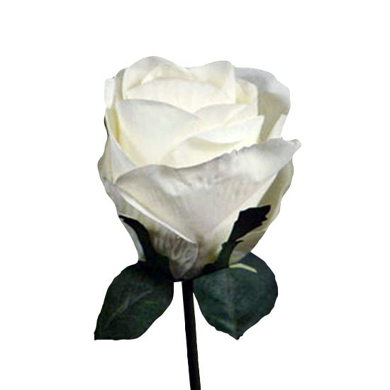Artificial Rose White Single Stem 75cm Cream