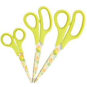 Citrus Fruit Pack of 3 Scissors