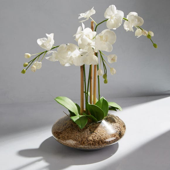 Dorma Artificial Orchid Arrangement White in Glass Vase 60cm White