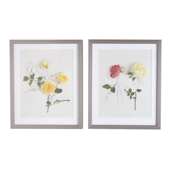 Set of Two Anna Newell Roses Framed Prints Multi Coloured