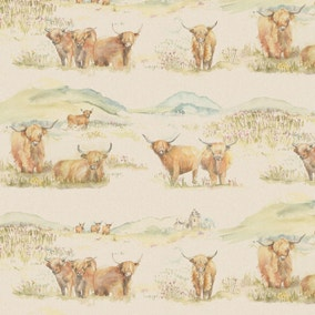 Highland Cattle PVC