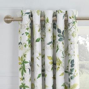 Dorma Botanical Garden Blackout Eyelet Curtains