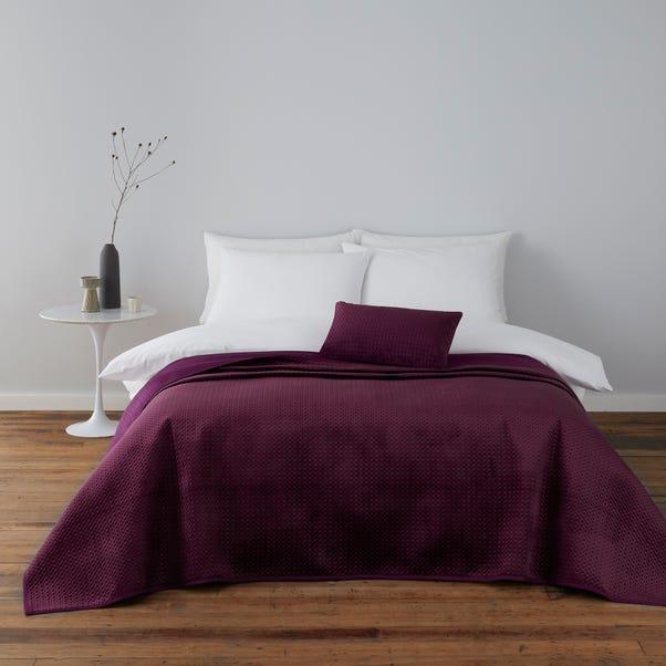 Violet Plum Cushion Plum Purple