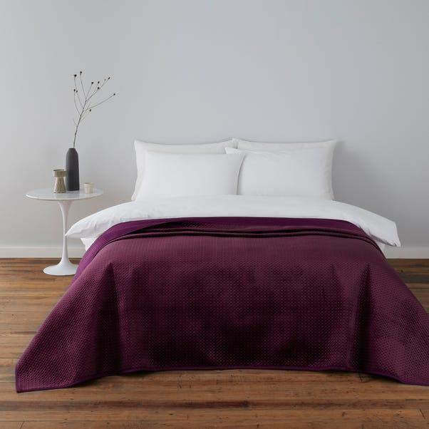 Violet Plum Bedspread Purple undefined