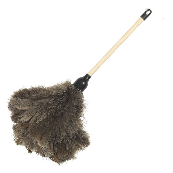Feather Duster Natural