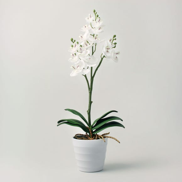 Artificial Orchid Cream in Pot 44cm Cream