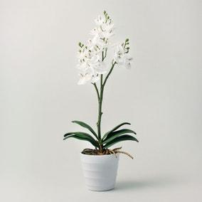 Artificial Orchid Cream in Pot 44cm