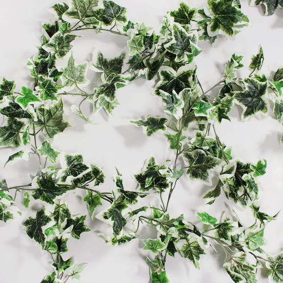Pack of 6 Holland Ivy Garland MultiColoured