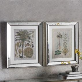 Botanica Floral II Set of 2 Framed Wall Art