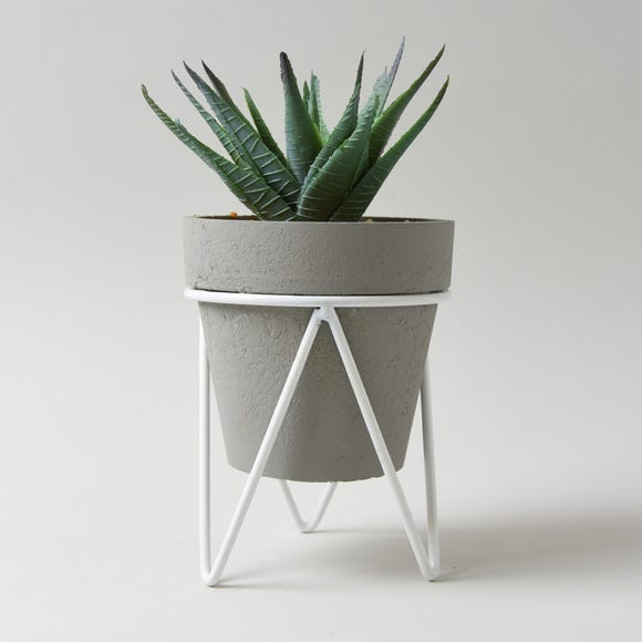 Aloe Vera Succulent in Grey Tripod Pot Green