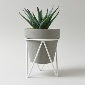 Aloe Vera Succulent in Grey Tripod Pot