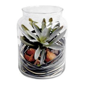 Artificial Succulent in Glass Jar 17cm