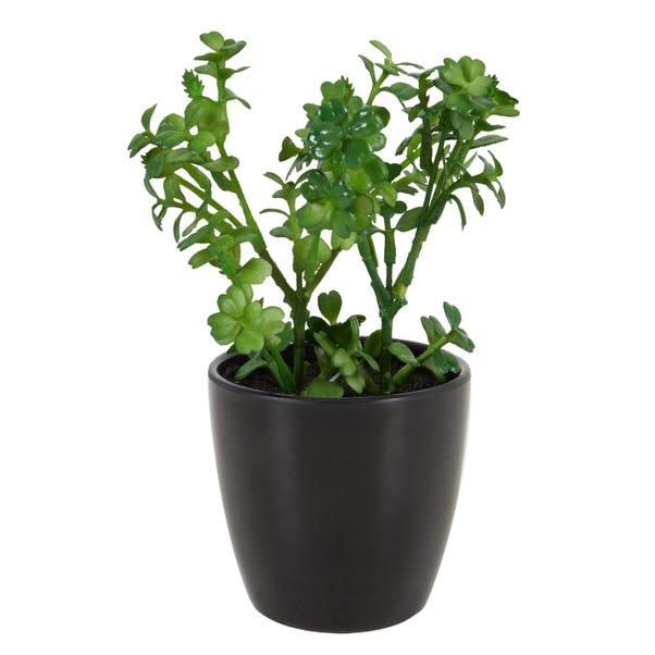 Artificial Portulacaria Afra Plant Green