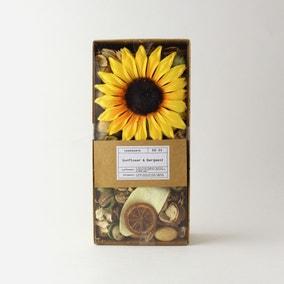 Churchgate Sunflower Pot Pourri