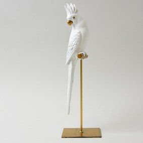White Parrot On Stand