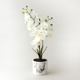 Artificial Orchid Cream in Marble Pot 56cm