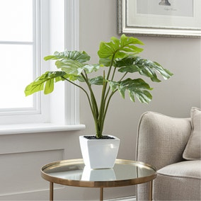 Artificial Cheese Plant Green in Ceramic Pot 53cm