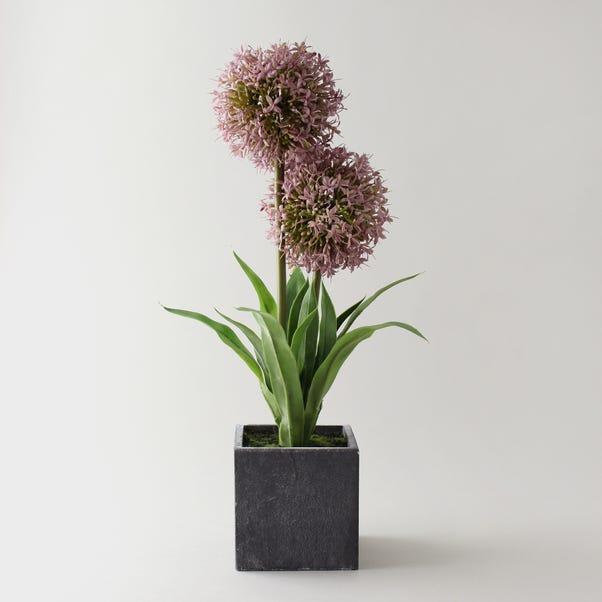 Artificial Lavender Allium Purple in Pot 46cm Purple