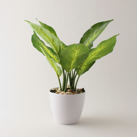 Artificial Dieffenbachia in White Pot 34cm Green