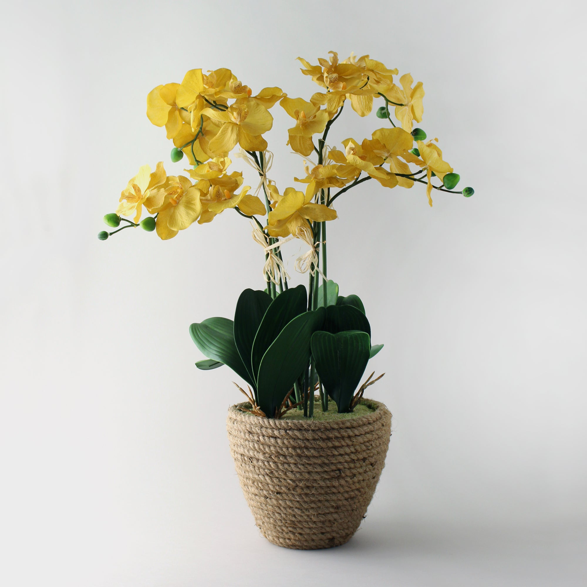 Click to view product details and reviews for Artificial Orchid Ochre In Jute Basket 70cm Yellow.