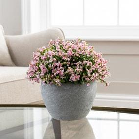 Artificial Florals Pink in Cement Pot 24cm