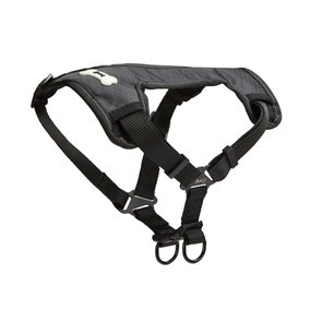 Bunty Black Strap 'N' Strole Dog Harness