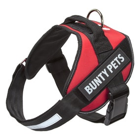 Bunty Red Yukon Dog Harness