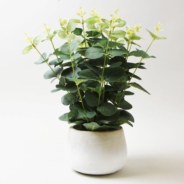 Artificial Eucalyptus Green in White Pot 33cm White