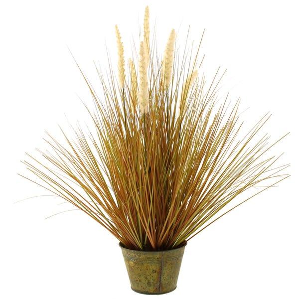 Foxtail Grass 60cm Green Green