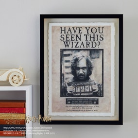 Harry Potter Wanted Wall Art