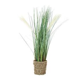Artificial Pampas Grass in Woven Pot 60cm