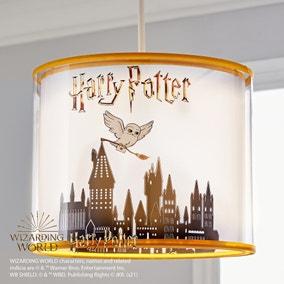 Harry Potter Light Shade