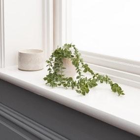 Artificial Trailing Eucalyptus Green in Reactive Pot
