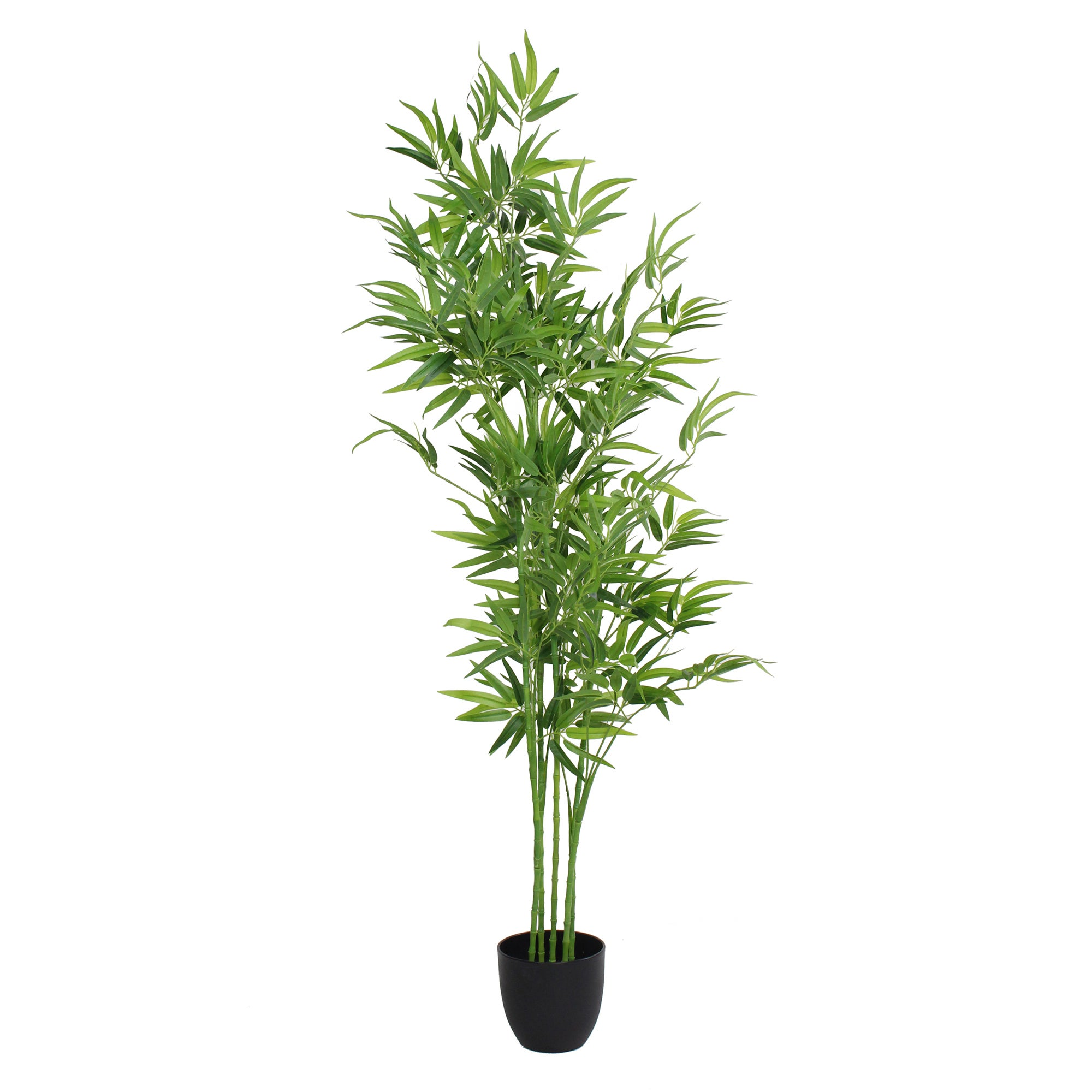 Photo of Artificial bamboo tree green