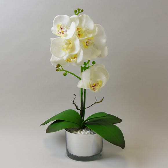 White Orchid in Silver Glass Pot 40cm White