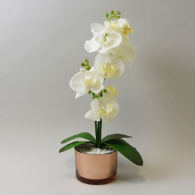 Cream Orchid in Gold Glass Pot 40cm