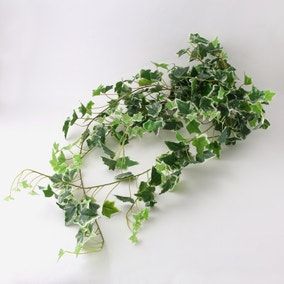 Variegated Ivy Bush Weather Resistant 110cm