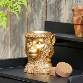 Grow Your Own Herbs with Monkey Planter