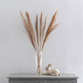 Dried Broom Grass Natural 100cm