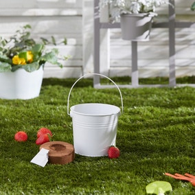 Kids Grow Your Own Strawberries Kit