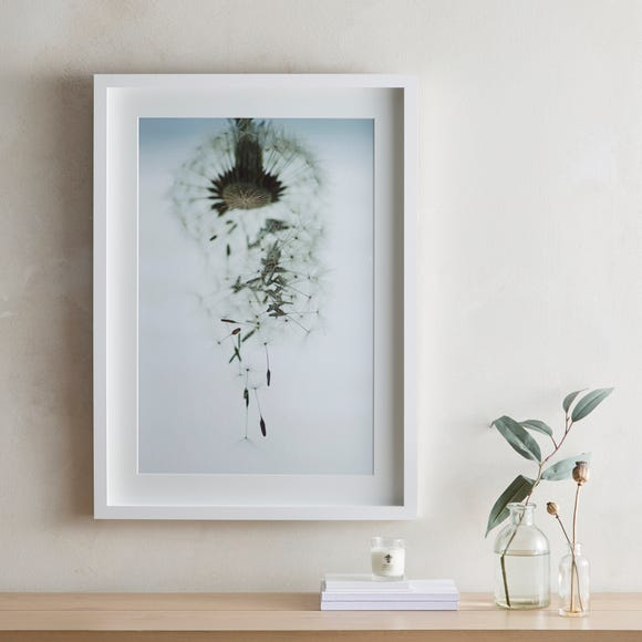 Dorma Purity Drifting Dandelion Mounted and Box Framed Exclusive Nature Print MultiColoured