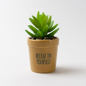 Beleaf In Yourself Artificial Succulent Plant