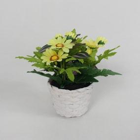 Yellow Daisy Mini Floral Basket