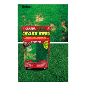 Canada Green 1kg Grass Seed