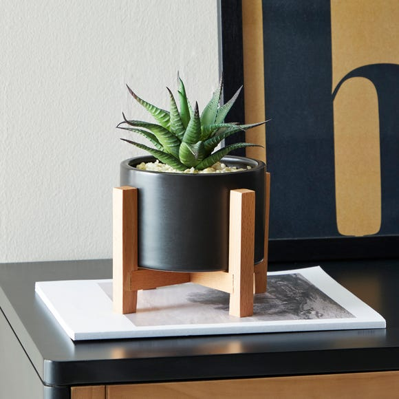 Black Pot on a Wooden Stand with Plant Black