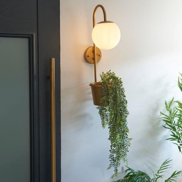 Naomi Outdoor Plant Pot Wall Light Gold