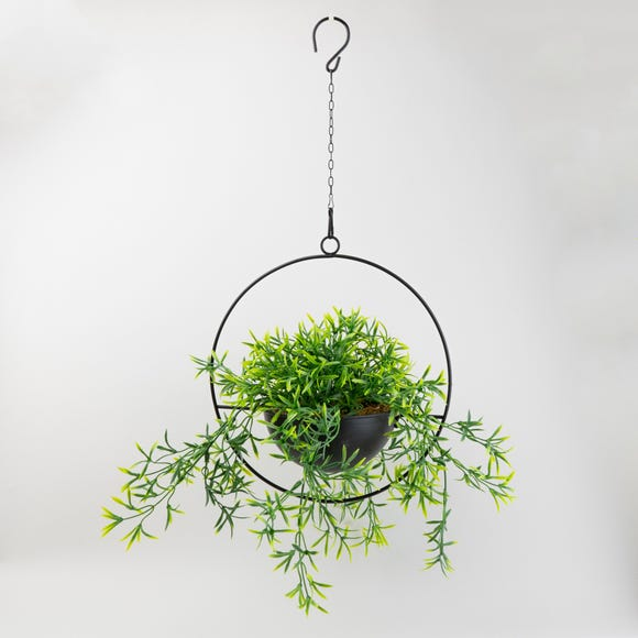 Industrial Round Black Hanging Plant  Green