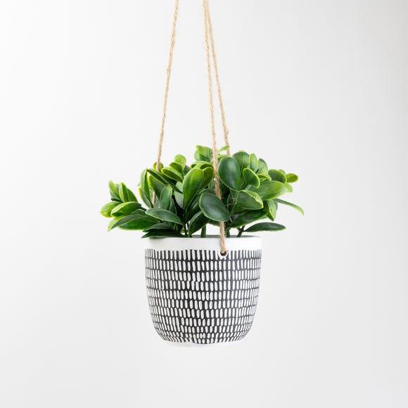 Hanging Plant in Cement Pot Black and white