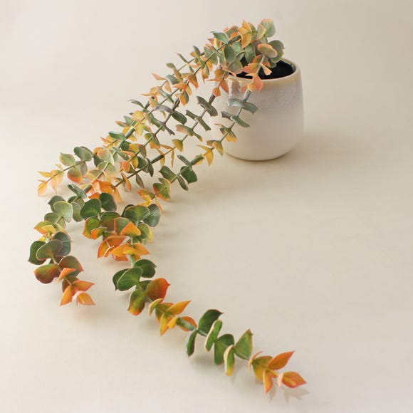 Trailing Eucalyptus in Reactive Glaze Pot Pink